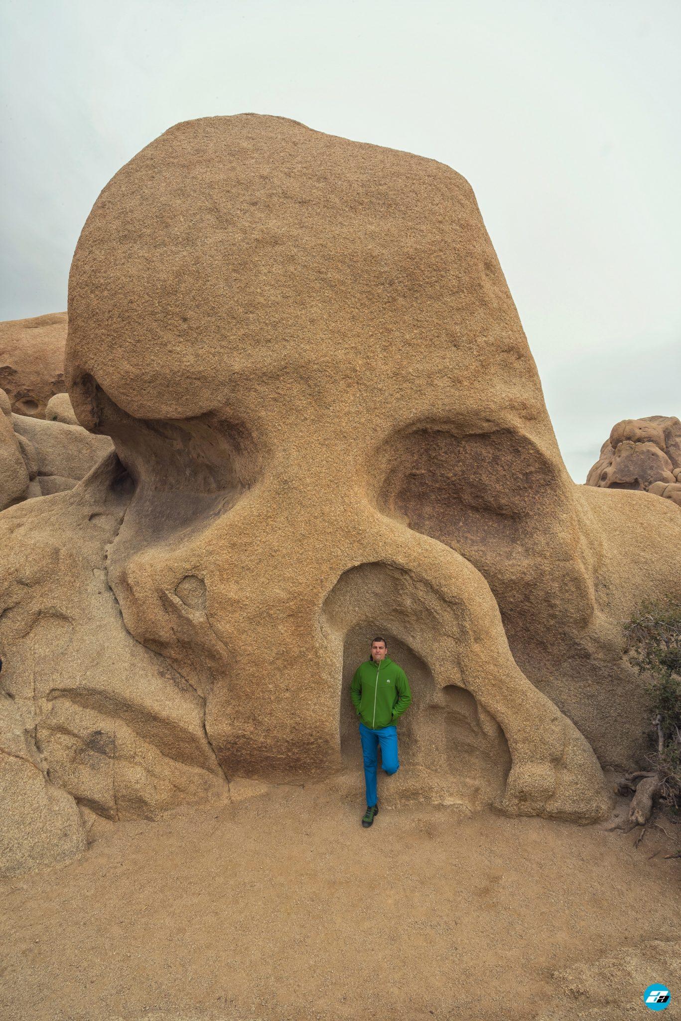 Joshua Tree National Park, California, USA. Skull Rock. California Attraction & Travel.