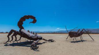 Anza-Borrego Desert, California, USA. Scorpion Statue. Grasshopper Statue. Ricardo Breceda Sculptures