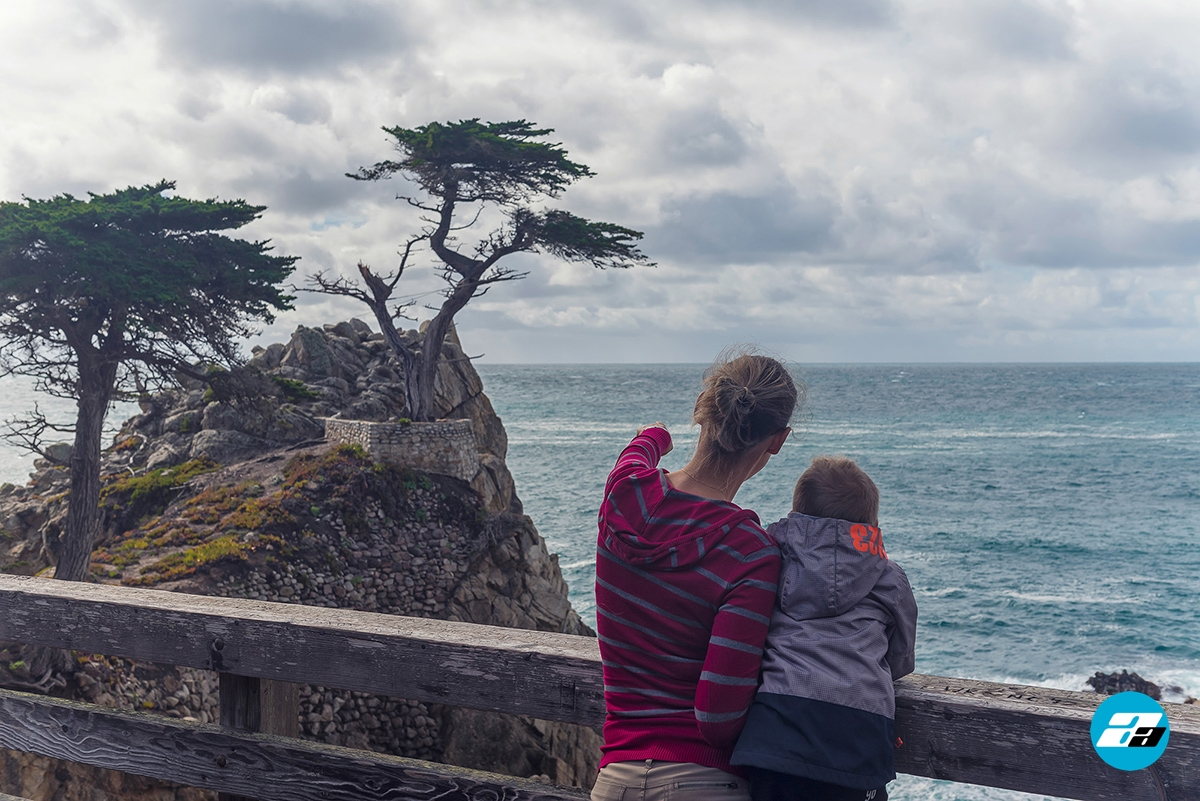 17 mile drive, carmel-by-the-sea, california